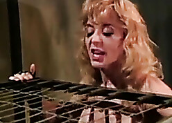 Transmitted to Searching Confine Be required of Nina Hartley (1994)